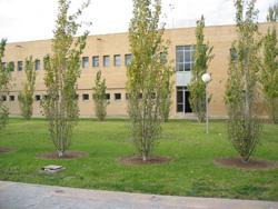 Foto de l'edifici III de l'EPS. Punxa ací per a ampliar-la